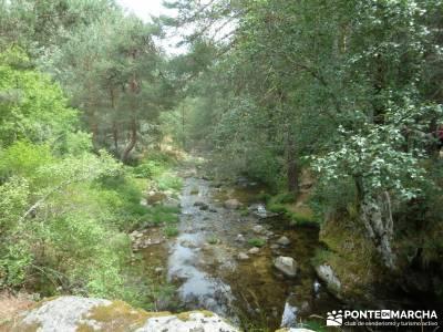 Valle del Lozoya - Camino de la Angostura;senderismo con niños madrid marcha en madrid